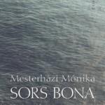 mesterhazi_borito